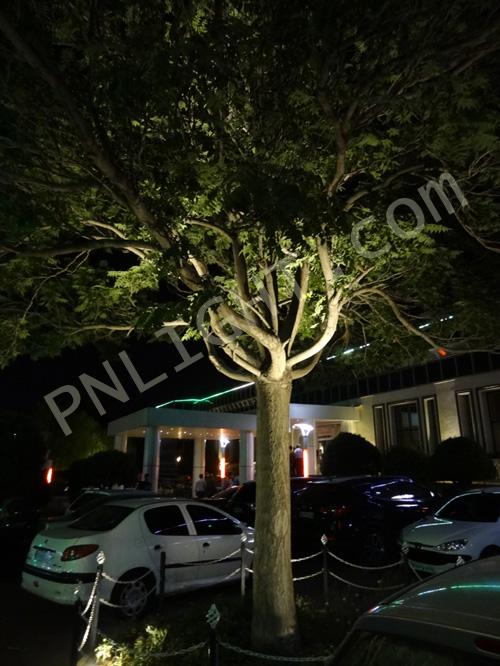 نورپردازی درختان فضای سبز