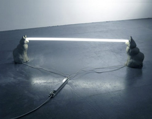 چراغ چشم گربه
